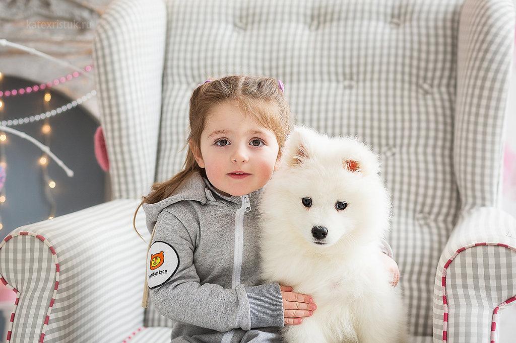 Новогодние фотосессии с щенками